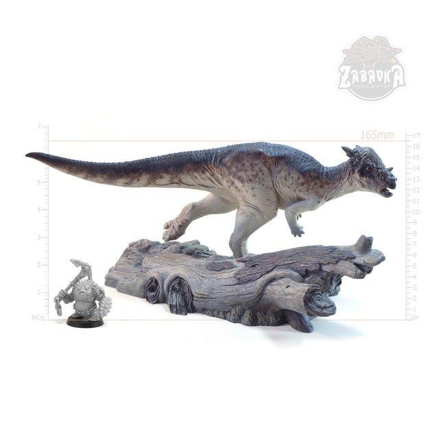 Pachycephalosaurus (165mm)